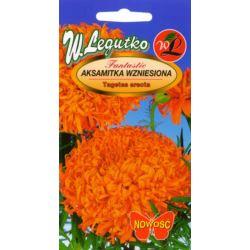 Aksamitka wzn. karłowa pomarańczowa 0.4g Lux L
